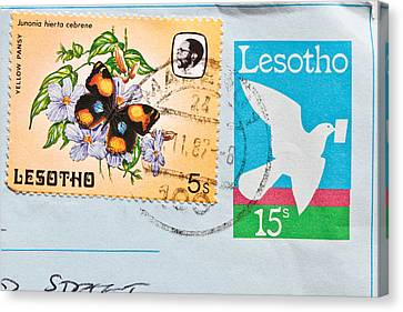 Lesotho Stamp Canvas Print by Tom Gowanlock