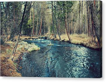 Water Flowing Canvas Print - Let It All Go by Laurie Search