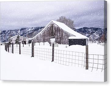 Canvas Print featuring the photograph Let It Snow by Kristal Kraft