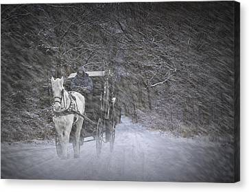 Let It Snow Canvas Print by Randall Nyhof