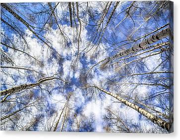 Peisaj Canvas Print - Let Me Lord Wind ... by Adrian Urbanek