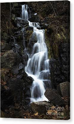 Let No Tears Fall Canvas Print by Nancy Dempsey