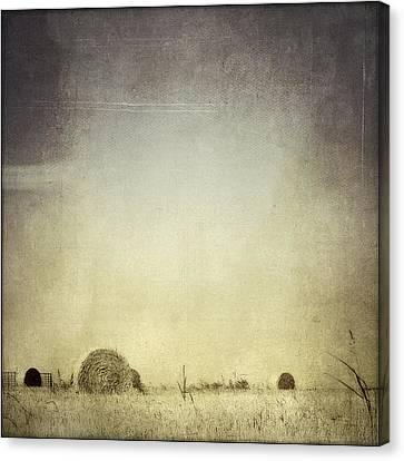 Let The Rain Come Down Canvas Print by Trish Mistric