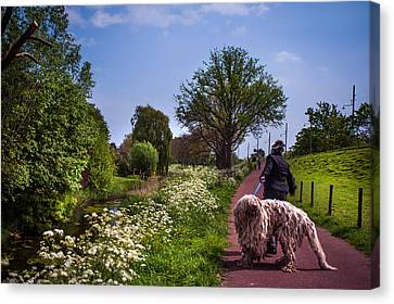 Lets Go Home Canvas Print