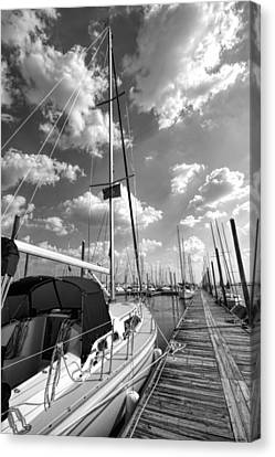 Let's Go Sailing Canvas Print by Kathy Clark
