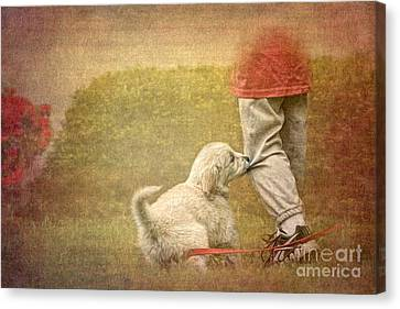 Let's Play Canvas Print by Jayne Carney