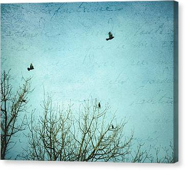 Canvas Print featuring the photograph Letters Of Flight by Lisa Parrish