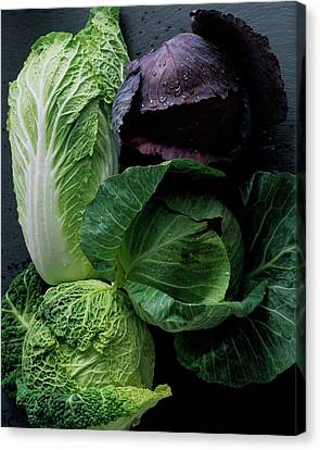 Cabbage Canvas Print - Lettuce by Romulo Yanes