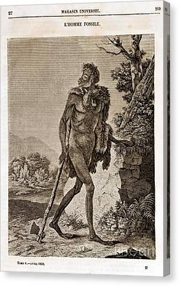 Lhomme Fossile, Cave Man, 1838 Canvas Print by Paul D. Stewart