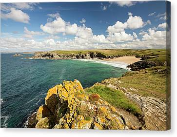 Lichen Covered Rocks Canvas Print by Ashley Cooper