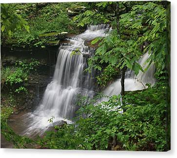 State Of Arkansas Canvas Print - Lichen Falls Ozark National Forest by Tim Fitzharris