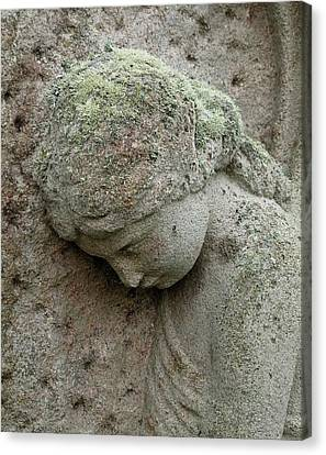 Lichen Growing On Gravestone Canvas Print by Cordelia Molloy