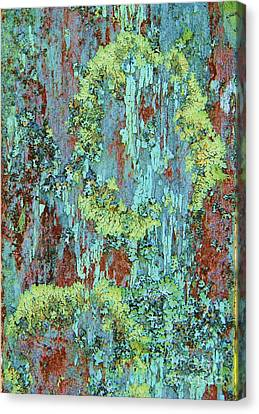 Canvas Print featuring the photograph Lichen On Fence by Michele Penner