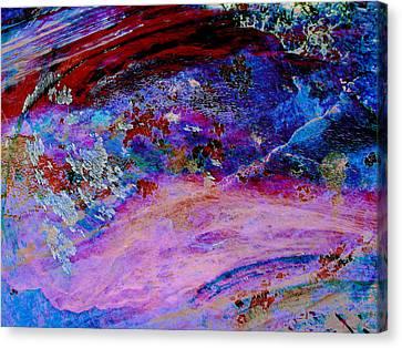 Lichen Sarabande Canvas Print by Stephanie Grant