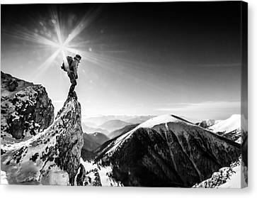 Life At The Top Canvas Print