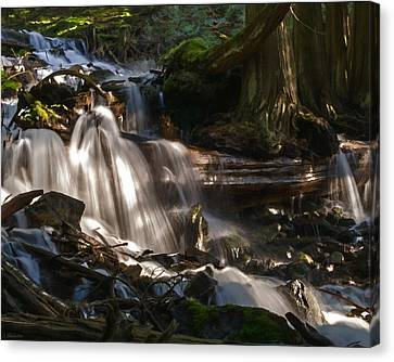 Life Begins To Flow Canvas Print by Jordan Blackstone
