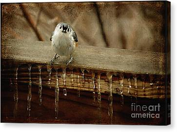 Life Can Be Tough Canvas Print by Lois Bryan