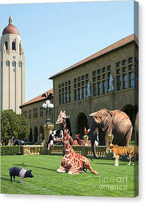 Life Down On The Farm Stanford University California Vertical Dsc685 Canvas Print by Wingsdomain Art and Photography