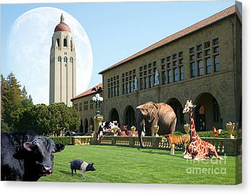 Life Down On The Farm Under The Moon Stanford University California Dsc685 Canvas Print by Wingsdomain Art and Photography