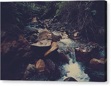 Life Flows On Canvas Print by Laurie Search