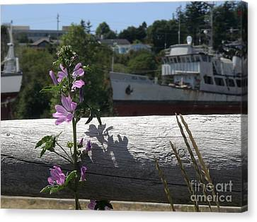 Canvas Print featuring the photograph Life In The Boatyard by Laura  Wong-Rose