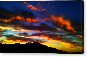 Canvas Print featuring the photograph Life In The Desert by Chris Tarpening