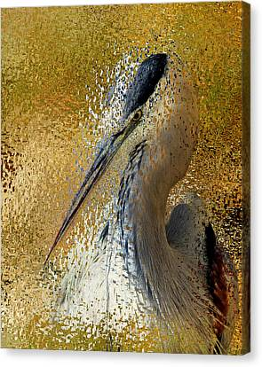 Life In The Sunshine - Bird Art Abstract Realism Canvas Print by Georgiana Romanovna
