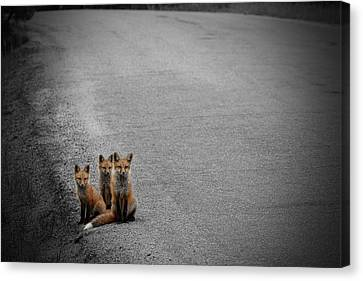 Life Is An Unknown Highway Canvas Print by Jim Garrison