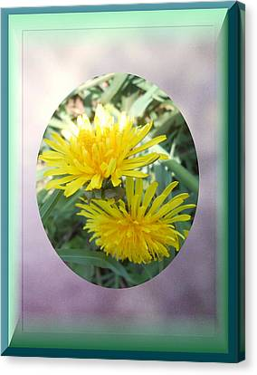 Life Is Made Up Of Dandelions Canvas Print by Patricia Keller