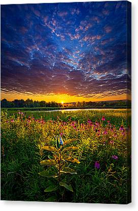 Life Is Worth Living Canvas Print by Phil Koch