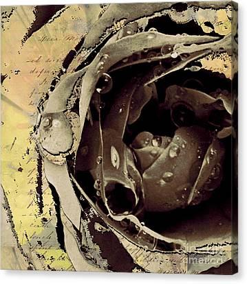 Life Iv Canvas Print by Yanni Theodorou
