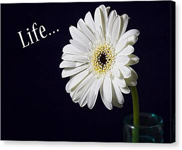 Life Canvas Print by Kim Andelkovic
