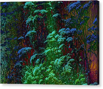 Life Canvas Print by Lenore Senior