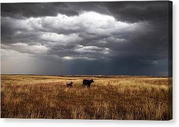 Life On The Plains Canvas Print by Sean Ramsey