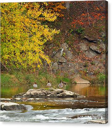 Life On The River Square Canvas Print