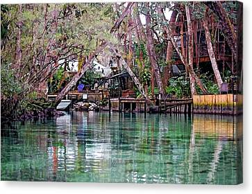 Life On Weeki Wachee Springs Canvas Print