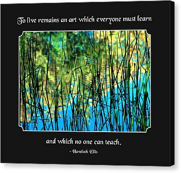Life Remains An Art Canvas Print by Mike Flynn
