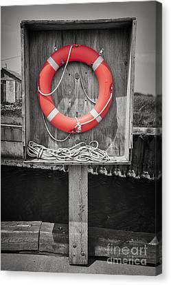 Lifebelt Canvas Print - Life Saver by Elena Elisseeva