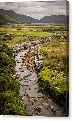 Life To The Glen Canvas Print by Tim Bryan
