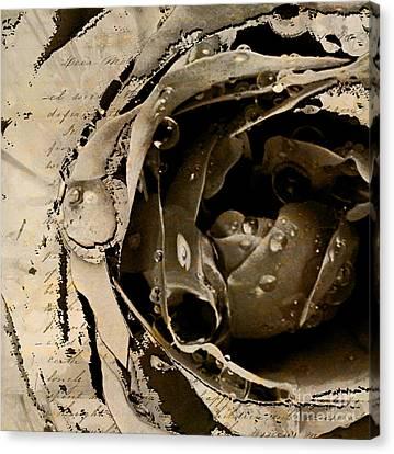 Life V Canvas Print by Yanni Theodorou