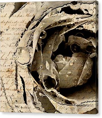 Life Vii Canvas Print by Yanni Theodorou