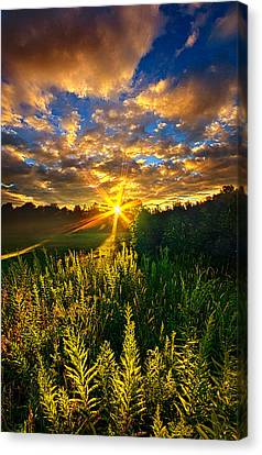 Life Was Changed Canvas Print by Phil Koch