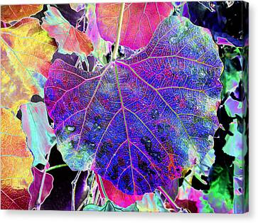 Life's Vein Canvas Print by Kenneth James