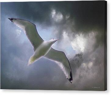Lift - Oil Paint Effect Canvas Print by Brian Wallace