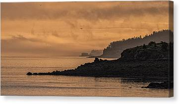 Canvas Print featuring the photograph Lifting Fog At Sunrise On Campobello Coastline by Marty Saccone