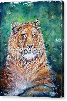 Liger Canvas Print by Zaira Dzhaubaeva