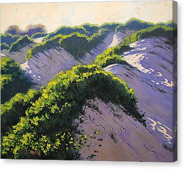 Light Across The Dunes Canvas Print by Graham Gercken