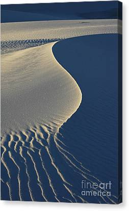Light And Shadows Canvas Print by Vivian Christopher