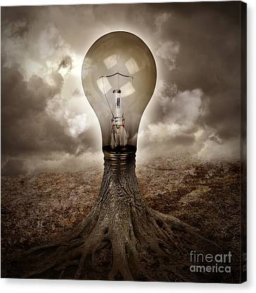 Light Bulb Growing An Idea In Nature Canvas Print by Angela Waye