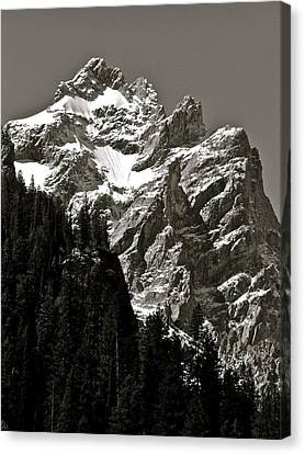 Light Dusting Canvas Print by Gael Graysen